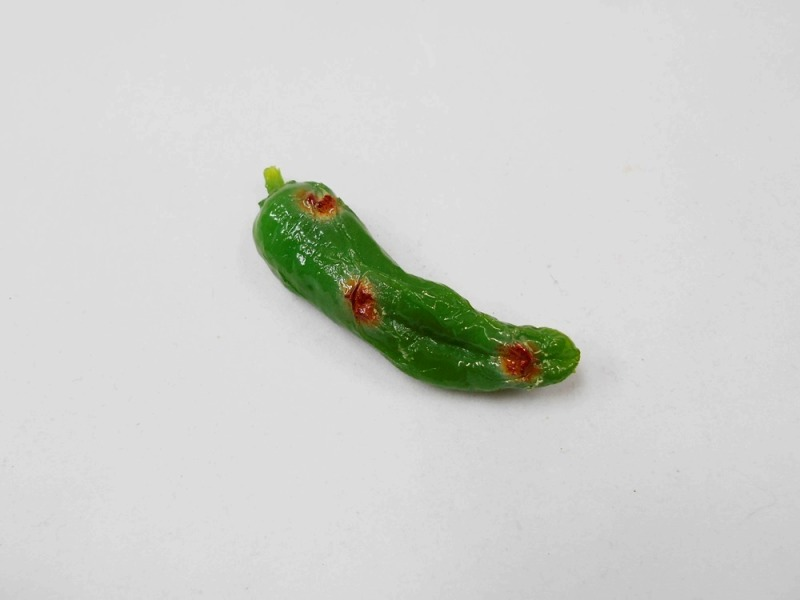 Grilled Green Pepper Magnet