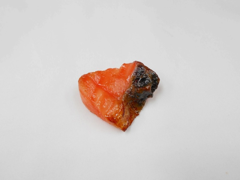 Grilled Salmon (small) Magnet