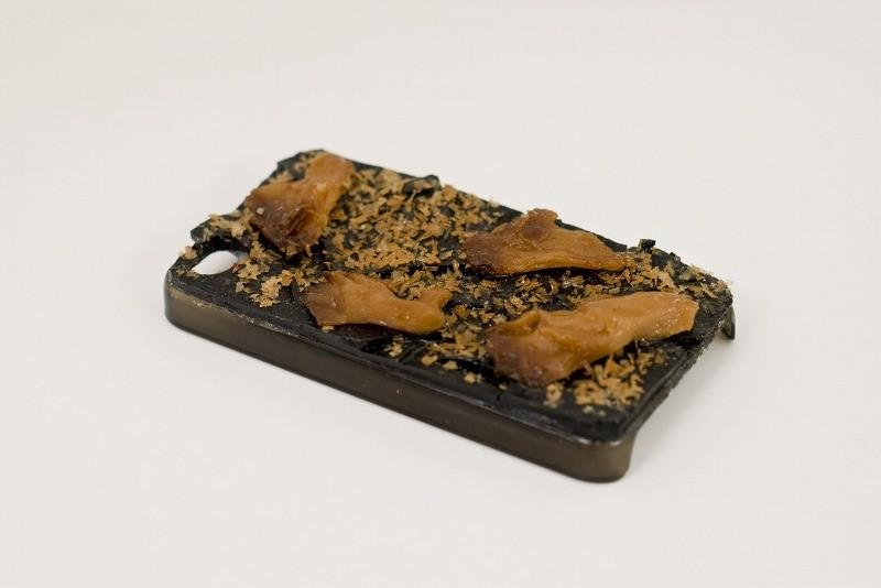 Kelp with Maitake Mushrooms & Katsuo (Dried Bonito Shavings) iPhone 4/4S Case