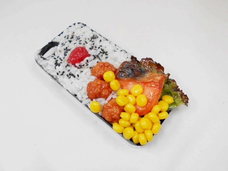 Salmon & Kara-age (Boneless Fried Chicken) Bento iPhone 5/5S Case