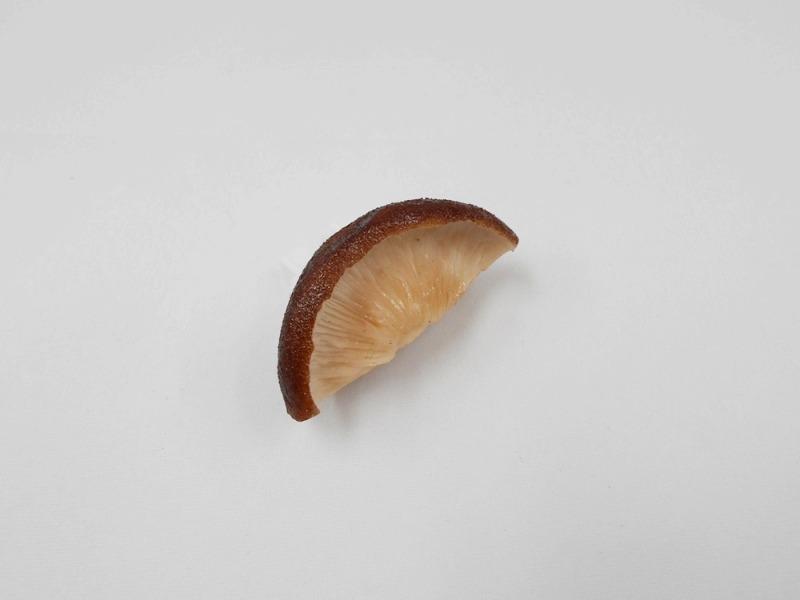 椎茸カット プラグカバー