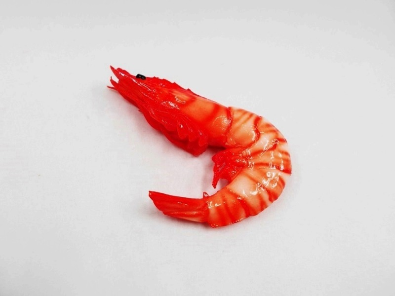 Whole Shrimp (small) Magnet