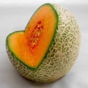 Melon Tablet Stand - Fake Food Japan