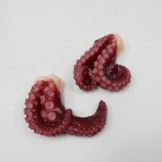 Octopus Magnet - Fake Food Japan