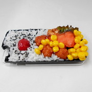 Salmon & Kara-age (Boneless Fried Chicken) Bento (new) iPhone 5/5S Case - Fake Food Japan