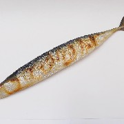 Yaki Sanma (Grilled Mackerel Pike) Magnet - Fake Food Japan