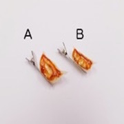 Gyoza Dumpling (Japanese Pot Sticker) (mini) Ver. 2 (A) Hair Clip - Fake Food Japan